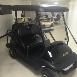 Villager 4 Club Car Precedent