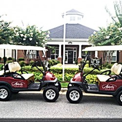 Corporate Golf Carts