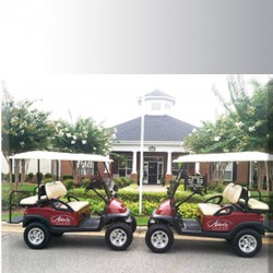 Two Company Golf Carts