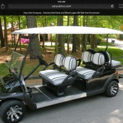 6-Seat Golf Cart